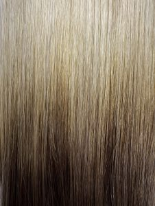 T#66/#60 OMBRE HAIR